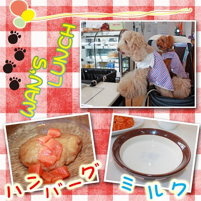 42_20120917140418.jpg