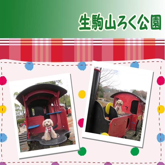 44_20130112172641.jpg