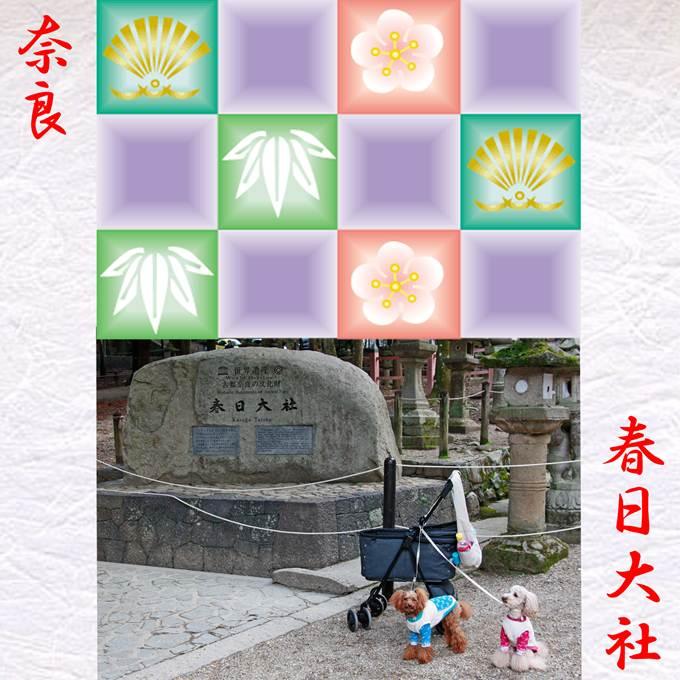 52_20130102200649.jpg