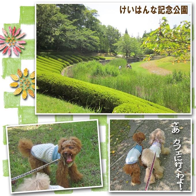 5_20120817224611.jpg