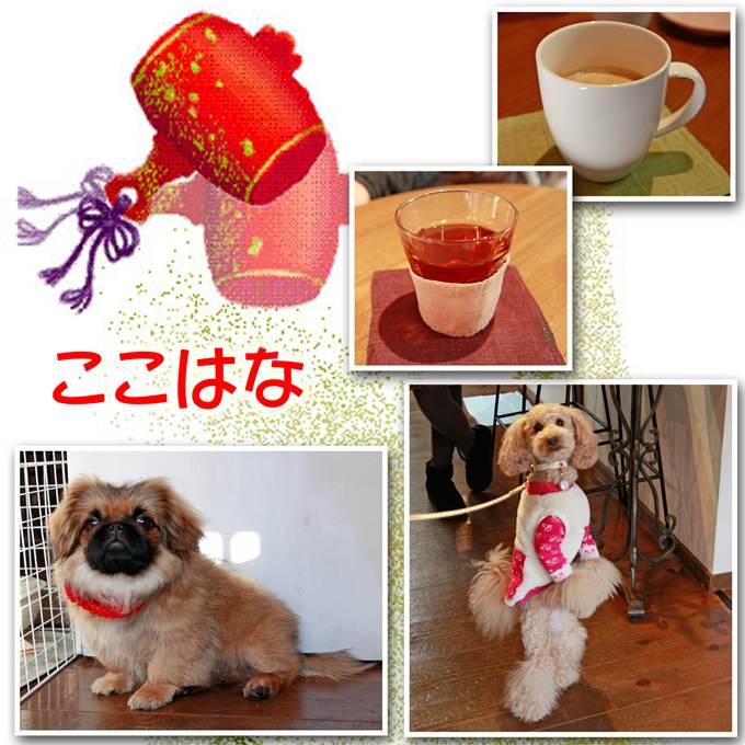 72_20130105125442.jpg