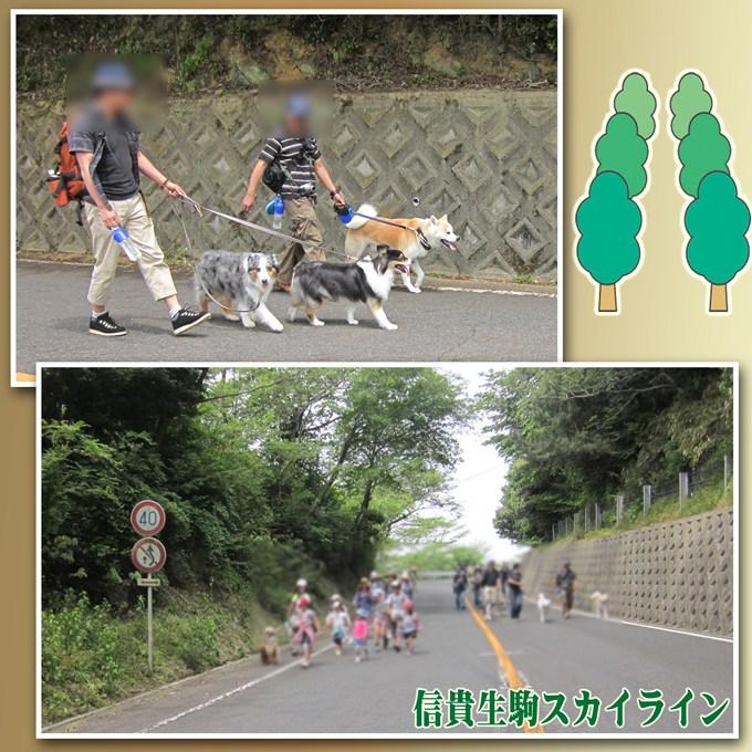 7_20120610092333.jpg