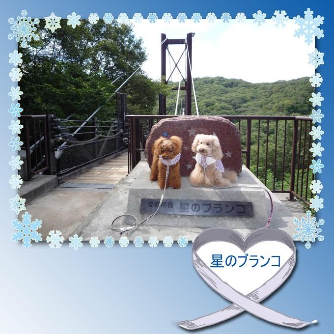 8_20120923092027.jpg