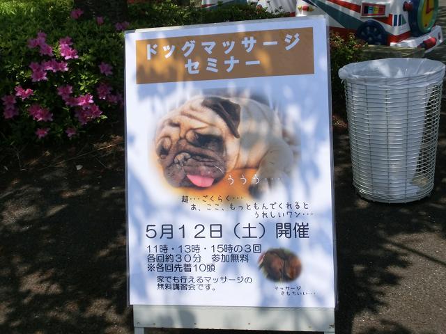 西武園ドックイベント (36)