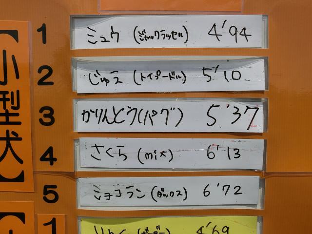 西武園ドックイベント (40)