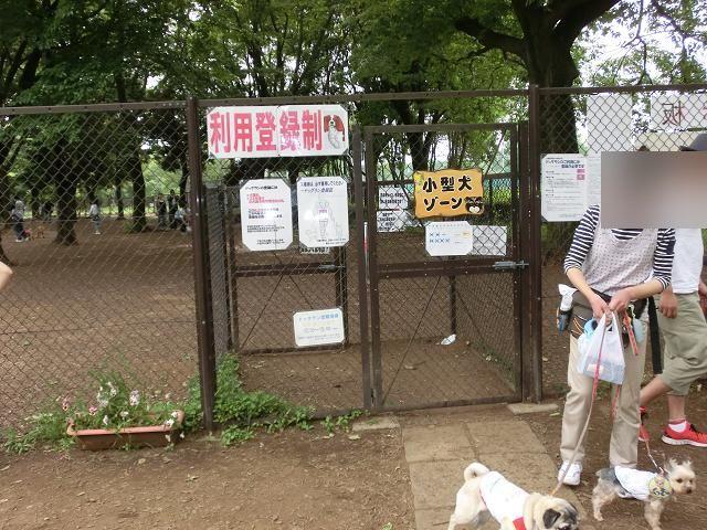 小金井公園プチオフ会 (125)