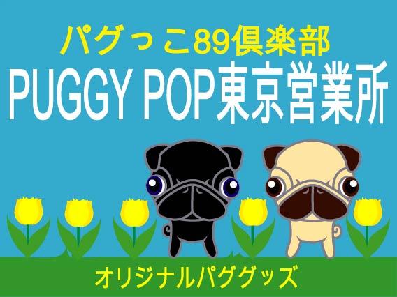 PUGGYPOP東京営業所TOP