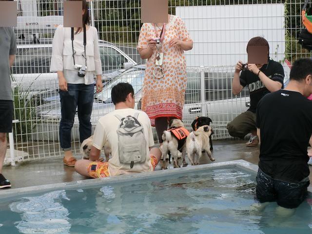 2012.09.15鶴ヶ島 (46)