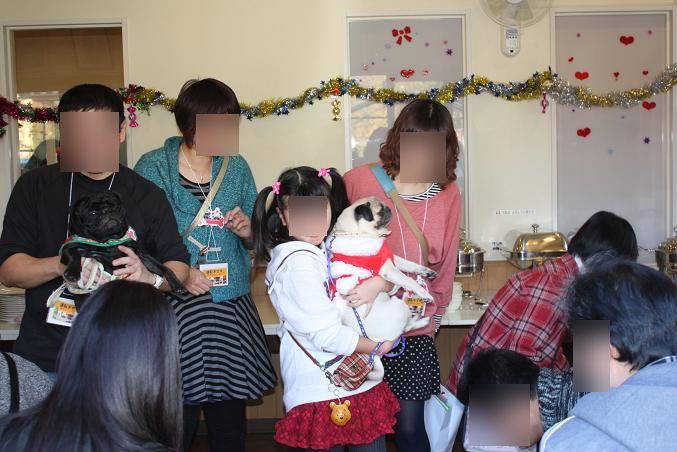 2012.12.09パグクリスマスオフ会 (75)