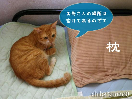 chiba12-08-68.jpg