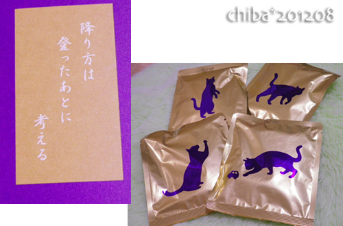 chiba12-08-78.jpg
