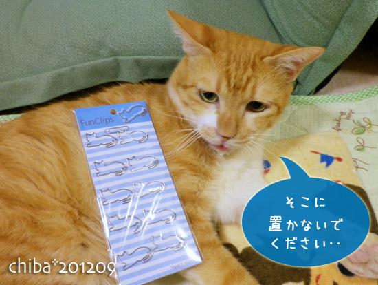 chiba12-09-46.jpg