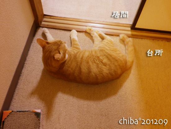 chiba12-09-54.jpg