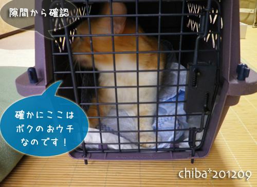 chiba12-09-64.jpg