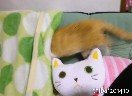 chiba14-10-196.jpg