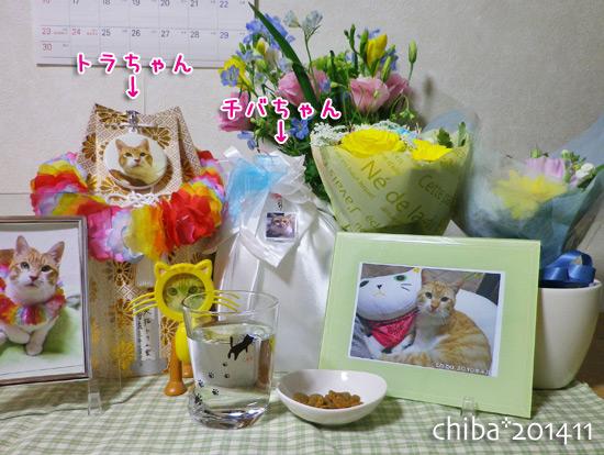 chiba14-11-04.jpg