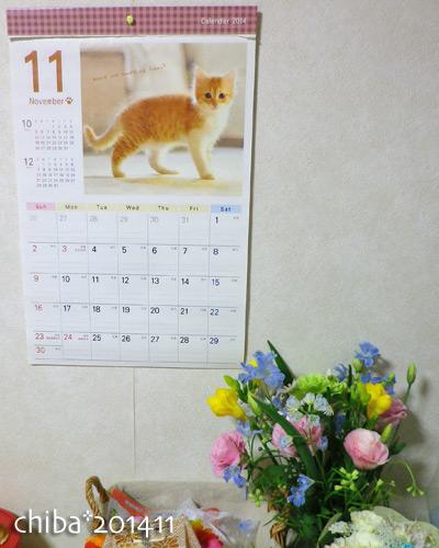 chiba14-11-11.jpg