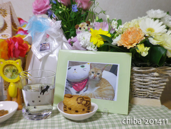 chiba14-11-12.jpg