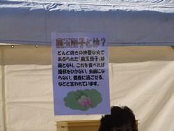 2_20130122093935.jpg
