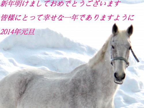 新年2_convert_20131230213429