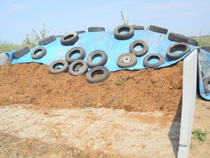 手作り堆肥