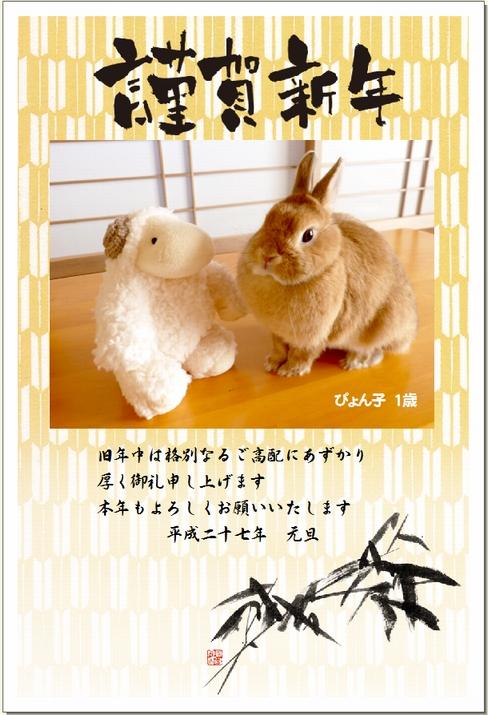 ぴょん子141218_04