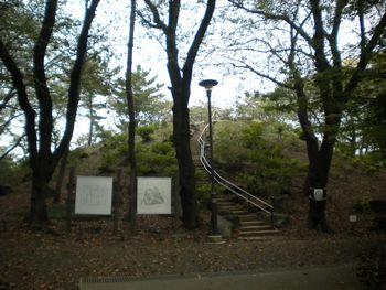 14_9東京CW・箱根山