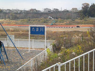 141124_2_多摩川
