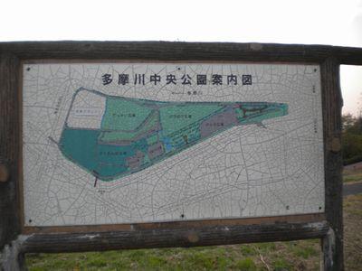 141124_3_多摩川中央公園