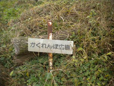 141124_4_かくれんぼ広場