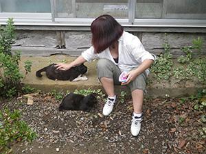 tashirojima01_04-1.jpg