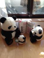 パンダ3匹