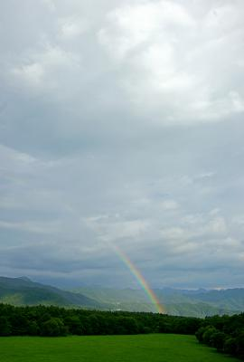 rainbow120826_05.jpg
