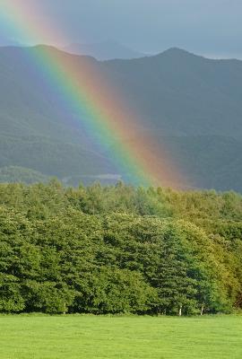 rainbow120826_06.jpg