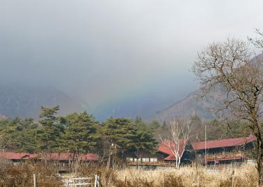 rainbow121123_07.jpg
