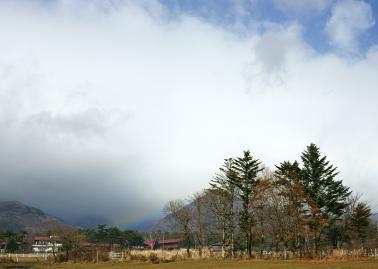 rainbow121123_08.jpg