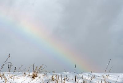 rainbow121222_01.jpg