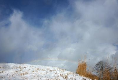 rainbow121222_03.jpg