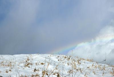 rainbow121222_05.jpg