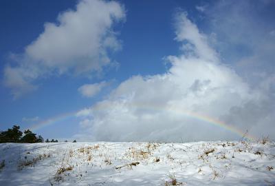 rainbow121222_06.jpg