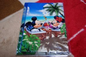 【ミッキーとミニー】ノートとクリアファイルセット