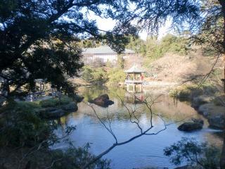 2012年12月24日 成田山・5