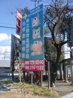 2012年12月27日 雷神社・3