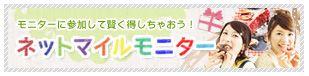 netmailemonita4.jpg