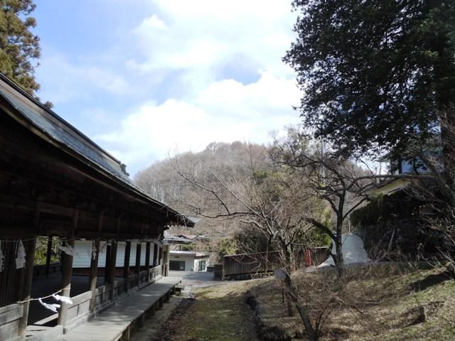 干沢城 (74)
