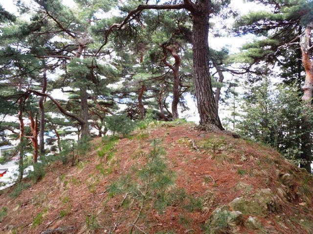 千鹿頭神社の砦 (3)