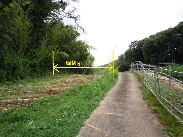 芦田城② (40)