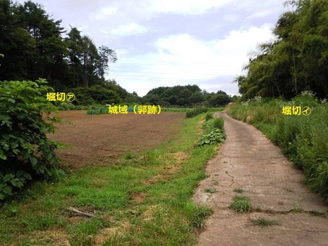 芦田城② (37)