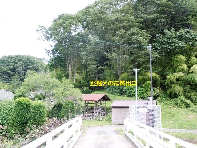 芦田城② (49)