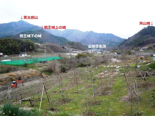 長島の堀之内 (2)
